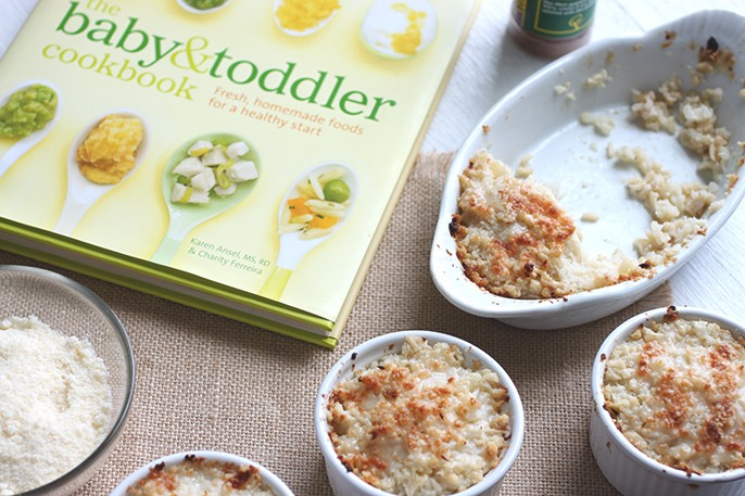 Book review the baby and toddler cookbook fab fatale thebabyandtoddlercookbookkarenanselcharityferreira1 forumfinder Choice Image