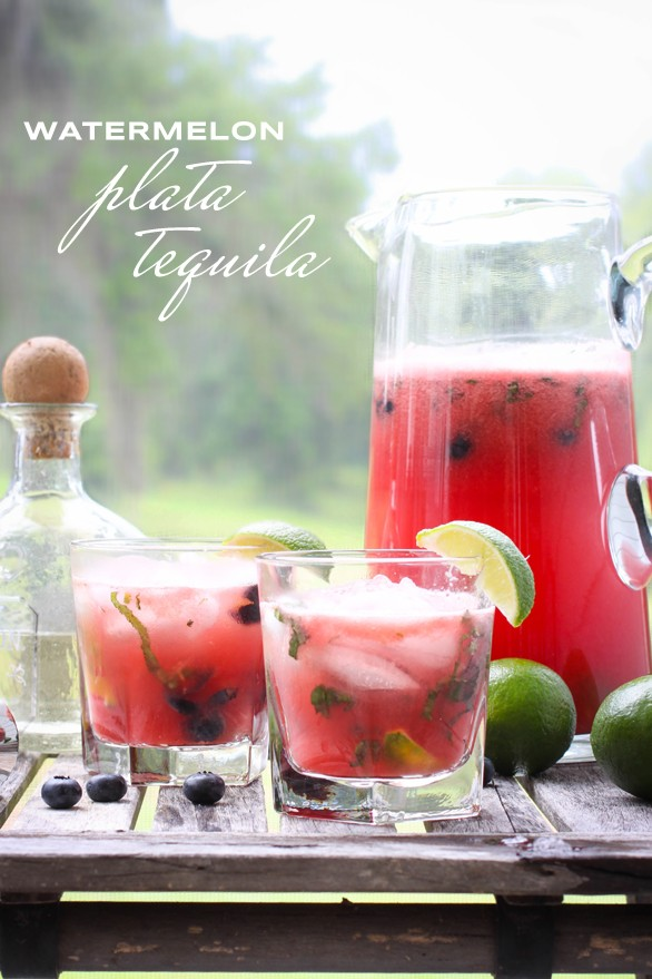 refreshing summer cocktail - watermelon plata tequila