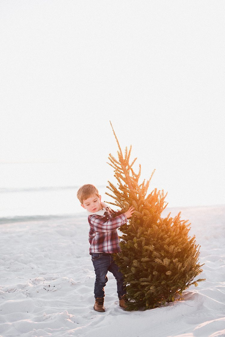 loving our family christmas card pics with my toddler boy carrying the christmas tree.  he makes a great lumberjack!